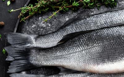 Le domande più frequenti sul pesce di allevamento